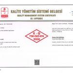 Goldsit Quality Management System Certificate Appendix